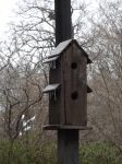 Bird House by 12redroses
