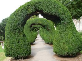 Arched Gardens by Kael-Thas-Sunstrider