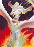 Covered by flames - Reshiram by InnocentiaSanguinis