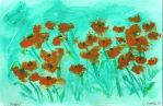 Poppies by Raph1966