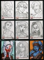 Star Wars Galaxy 4 154-162 by aimo