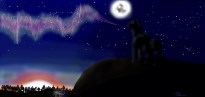 Can you see northern lights? by Kohanax