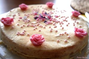 Orangen-Yoghurt-Torte by Power-Barbie