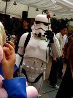 Stormtrooper Love by damnature