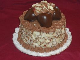 Nutella Chocolate Cake by cakescapade