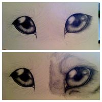 WIP-Wolf Eyes-Update by hinata8D