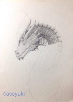 Flying dragon (WIP #2.1) by cassyuki