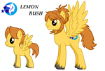 The Infinite Time Loops - Lemon Rush by Tanglemorph-wanderer
