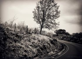 Around the Bend by BCMPhotography