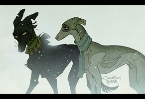 Lost by CanisAlbus