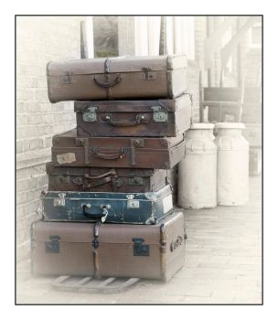 Luggage by Wildfowl