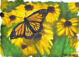 Monarch Butterfly and flowers by strryeyedreamr27
