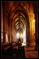 St Albans Cathedral by scuroluce