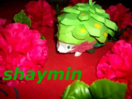 My Shaymin papercraft. by laralissia