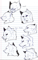 Wolf warm-up sketches by Blind-Kidd