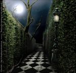 Premade BG Labyrinth at Night by E-DinaPhotoArt