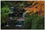 Fall Waterfall by LoneWolfPhotography