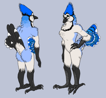 OLD Fursona reference sheet by BurdBrain