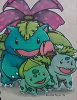 Bulbasaur, Ivysaur and Venusaur by Sew-What