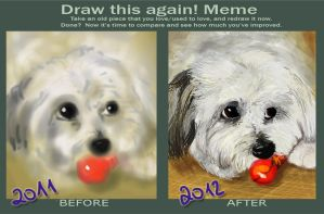 Before and After Meme 2012 by MakaniValur