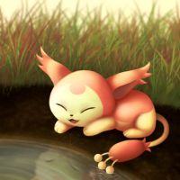 Skitty by Buckberry