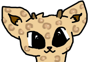 Leopard thing idk by pawsupbaby