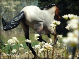 Spring Run by EquusInspiration