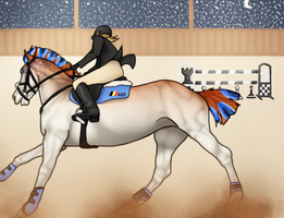 RF Royal Winter Event : Show-Jumping by Shamrocky