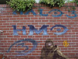 Halo-Halomovieonline Graffiti by CorporalAris