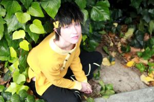 Ryoga- Where the Heck Am I by twinfools