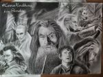 The Hobbit: The Desolation of Smaug by LauraKordikova