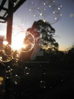Sunrise and Bubbles by sessy