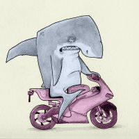 Shark on a Bike by chunkysmurf