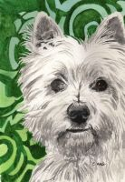 West Highland White Terrier by RamonaQ