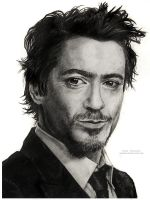 Robert  Downey Jr. by MeduZZa13