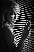 Through the blinds by sifu