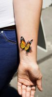 Butterfly by tikos