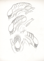 Alien heads :3 by SweetyXenomorph