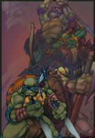 Teenage Mutant Native Turtles by mulcimber