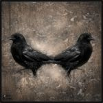 Corvus Declension III by Baron-of-Darkness