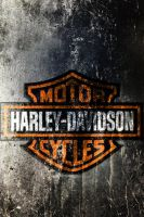 Harleylogo On Texture 253-640x960 by drouell