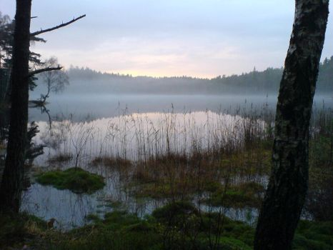 Foggy lake by xGhostwriterx