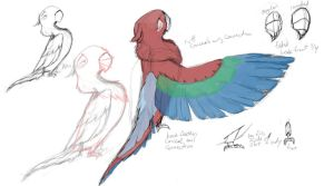 Bird Redesign Wip by elipse