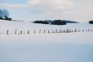 Snowscape Stock 37 by Sed-rah-Stock