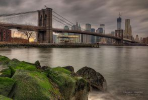 Brooklyn Rocks by LeashaHooker