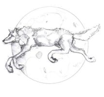 wolf over the moon by lamelobo