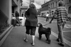 Dog and owners by parablev