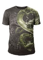 MMA Design - Enter the Dragon by Oblivion-design