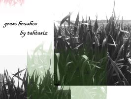 Grass Brushes by tahtasiz