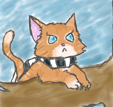Kyshio the Ninja Kitty by Drizzle-The-Glaceon